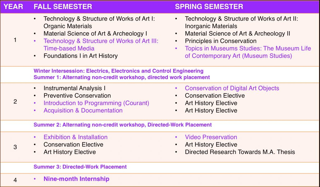 Figure 4: TBM art conservation curriculum at CC/IFA/NYU. TBM-specific courses, workshops, and nondegree-required activities are marked in purple.